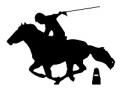 Mounted Games Logo